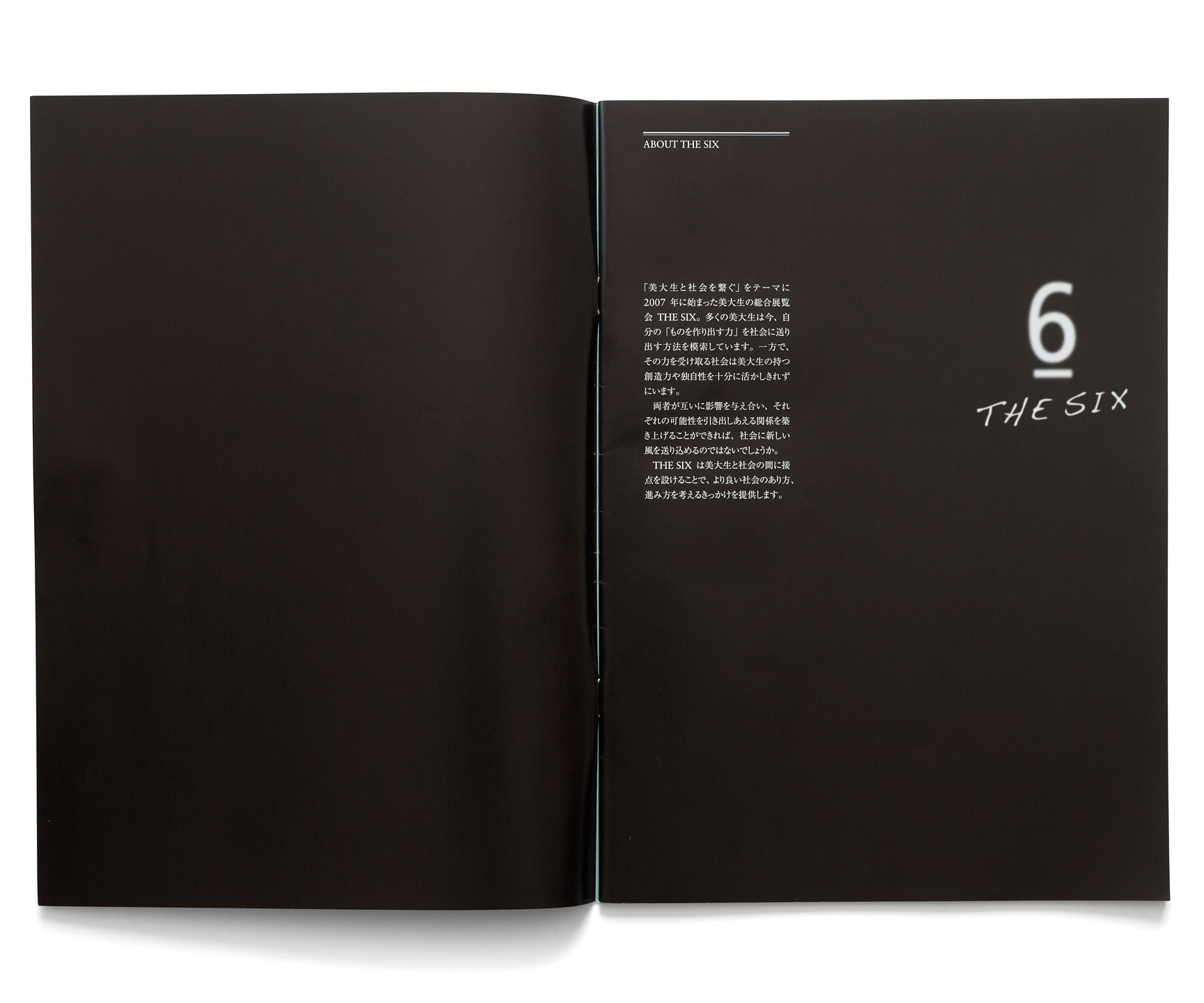 The Six 2010 Catalog